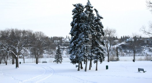 saskatoon-park