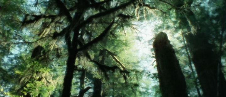 9 films to celebrate Parks Canada's centennial