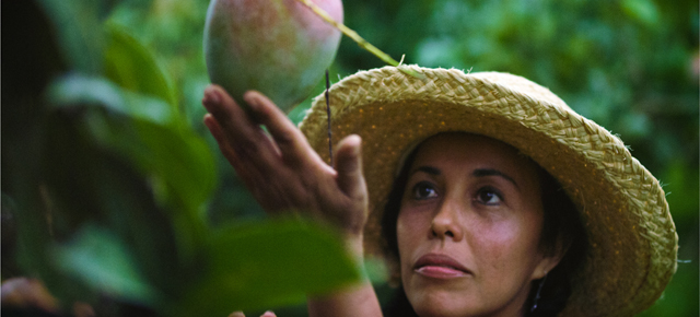 Watch Docs About Rare Fruits, Horse Racing and Prostitution Laws in Libraries This Fall