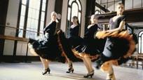 flamenco-a-515_sm