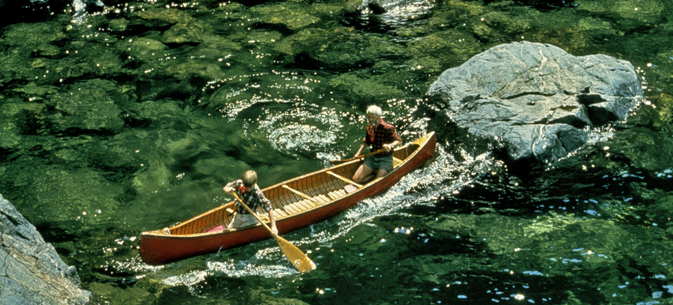 Water is Life | Watch 7 Films About our Most Vital Resource
