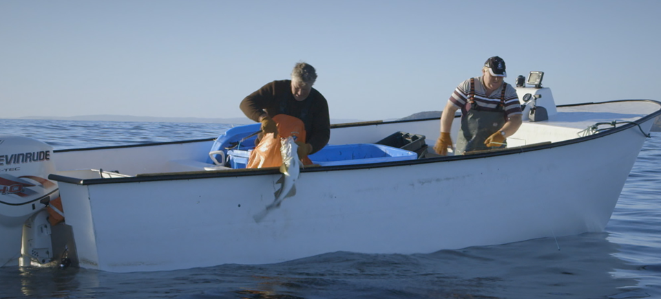 Where to Fish in Canada | Watch 15 Films About Fishing
