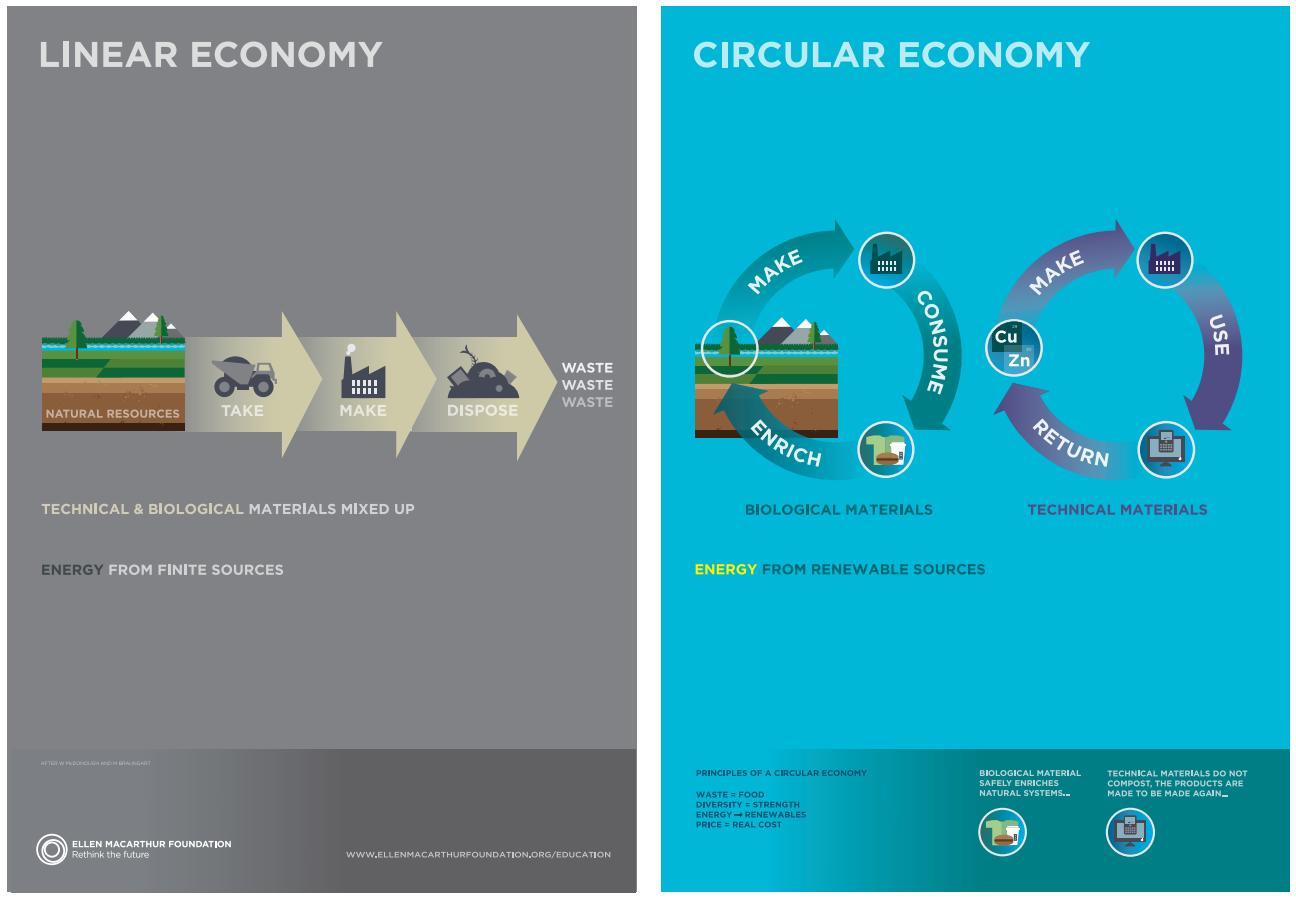 Linear economy vs circular economy