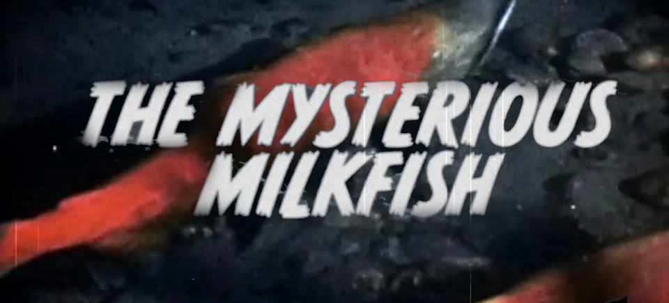 The Mysterious Milkfish and Other Totally Real Animals