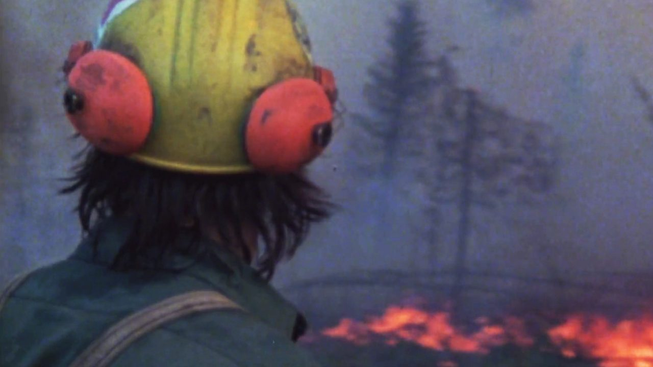 Travel into the heart of a forest fire with these 2 docs