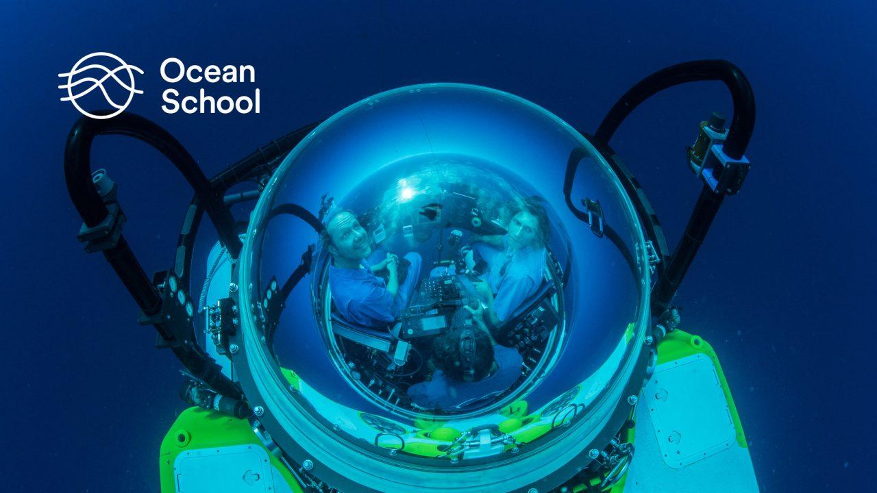 Ocean School : An Underwater Classroom