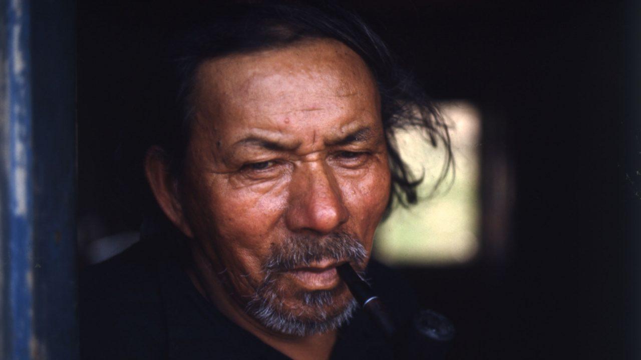 Celebrate the International Year of Indigenous Languages
