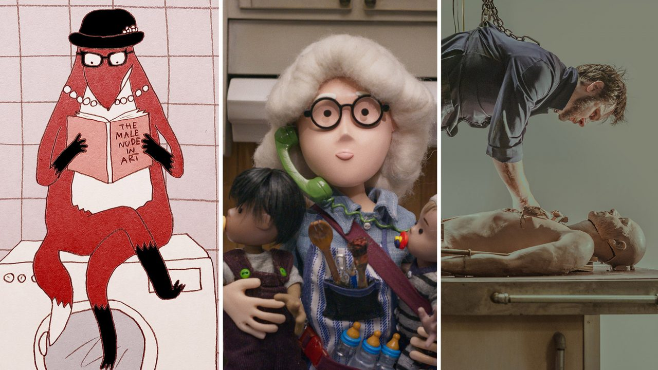 Coming in May: Watch 3 New Animated Shorts on NFB.ca